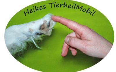 Heike Wehner